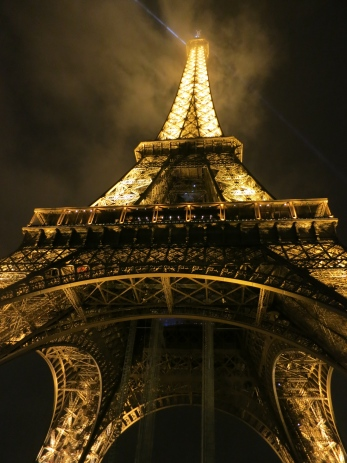 The Eiffel Tower  - photo taken by thebookkat